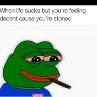 😐😐😂😂😂: When life sucks but you're feeling decent cause you're stoned 😐😐😂😂😂