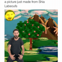 Shia LaBeouf: a picture just made from Shia  Labeouf s