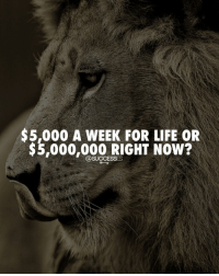 "Pick one and comment ""Why"" best caption wins. - - Business Lion Money: $5,000 A WEEK FOR LIFE OR  $3,000,000 RIG NoW?  OSucoEses Pick one and comment ""Why"" best caption wins. - - Business Lion Money"