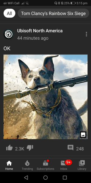 This dogs name is Boomer: 5:15 pm  25%  eir WiFi Call  Tom Clancy's Rainbow Six Siege  All  Ubisoft North America  44 minutes ago  OK  I 248  123לK  9+  TT  Library  Inbox  Trending Subscriptions  Home This dogs name is Boomer