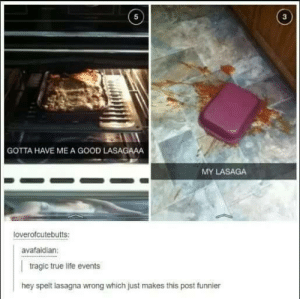 Tradgedeis: 5  3  GOTTA HAVE ME A GOOD LASAGAAA  MY LASAGA  loverofcutebutts  avafaidian:  tragic true life events  hey spelt lasagna wrong which just makes this post funnier Tradgedeis