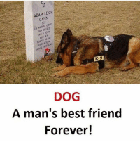 Best Friend, Best, and Forever: 5  ADAM LEIGH  ADAM LElo  CANV  SGT  US MARINE CORPS  JAN 25 1932  JAN 5 1006  PURPLE HEART  OPERATION  IRAOI FREEDOM  K-9  S  DOG  A man's best friend  Forever! Agree ? 🐶❤️