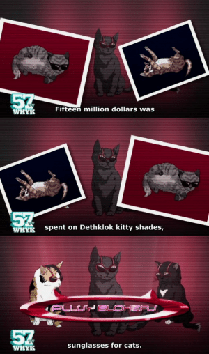 fifteen: 5  Fifteen million dollars was  WHYR   57  WHYE  spent on Dethklok kitty shades,   WHYR  sunglasses for cats.