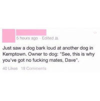 """Fuck sake Dave🤣 @memezar is absolutely hilarious: 5 hours ago Edited  Just saw a dog bark loud at another dog in  Kemptown. Owner to dog: """"See, this is why  you've got no fucking mates, Dave""""  40 Likes 19 Comments Fuck sake Dave🤣 @memezar is absolutely hilarious"""