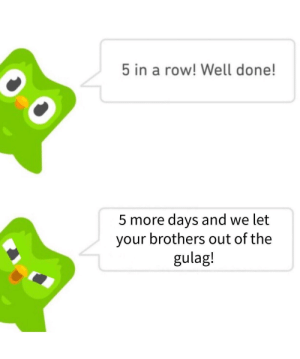 Memes, Russian, and Brothers: 5 in a row! Well done!  5 more days and we let  your brothers out of the  gulag! Please duolingo owl, no more Russian.. via /r/memes https://ift.tt/2U4lPDj