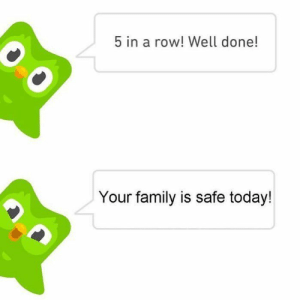 Family, Memes, and Horoscope: 5 in a row! Well done!  Your family is safe today! Are they ever safe from the Duolingo owl tho?🤞🏽😳💖💖 • • #memes #horoscopes #funnymemes #growingupshy #twitterthreads #horoscope #clearskin #nichememes -#memesdaily #selfcarethreads #threads #funfacts #funnymemes #baddie #threads #iwastodayyearsold #selfcarethread #funnymemes #trending #reactionpictures #twitterthread #reactionmemes #iwastodayyearsoldwhenifoundthisout #memes #memes #twittermemes #horoscopes #nichememe #reactionpics #relatablememes #growingupwithsiblings #jamescharles #funnyme