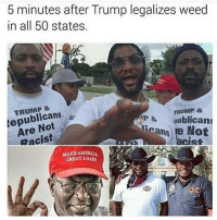 🐸☕😂😂😂😂😂 420humor 420shit forpeepsmarriedtothejuana pettypost pettyastheycome straightclownin hegotjokes jokesfordays itsjustjokespeople itsfunnytome funnyisfunny randomhumor donaldtrump: 5 minutes after Trump legalizes weed  in all 50 states  TRUMP &  lepublicans ..  Are Not  Racist  TRUMP &  P&oublicans  icans re Not  acist  MAKB AMERICA  GREATAGAR 🐸☕😂😂😂😂😂 420humor 420shit forpeepsmarriedtothejuana pettypost pettyastheycome straightclownin hegotjokes jokesfordays itsjustjokespeople itsfunnytome funnyisfunny randomhumor donaldtrump