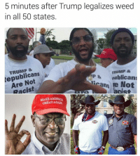<p>Trump might do it (via /r/BlackPeopleTwitter)</p>: 5 minutes after Trump legalizes weed  in all 50 states  TRUMP &  tepublicans  Are Notl-  Racist  TRUMP &  P&oublicans  cans re Not  acist  MAKE AMERICA  GREAT AGAN <p>Trump might do it (via /r/BlackPeopleTwitter)</p>