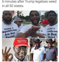 <p>👌👌</p>: 5 minutes after Trump legalizes weed  in all 50 states.  TRUMP &  epublicans  Are Not  Racist  TRUMP &  P & oublican  cans re Not  acist  CIS  MAKB AMERICA  GREATAGAN <p>👌👌</p>