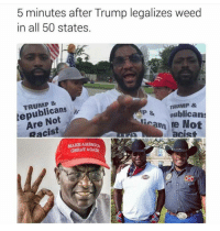 Memes, Racist, and All 50 States: 5 minutes after Trump legalizes weed  in all 50 states.  TRUMP &  AP & aublican  Not  Frans re Not  Racist  acist  L GREATAGAN WOOHOO VIVA LA TRUMP! LETS MAKE AMERICA GREAT AGAIN!😆 • ➫➫ Follow @savagememesss for more posts daily