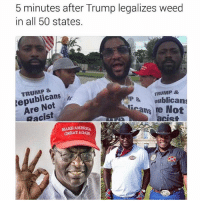 """Detroit, Fam, and Hype: 5 minutes after Trump legalizes weed  in all 50 states.  TRUMP &  TRUMP &  AP & oublican  Not  Racist  Not  MAKE AMERICA  GREAT AGAIN Fam I'm working today right tryna sell some vs clarity engagement rings to happy couples. And this old red neck comes in asking me if we sell a cowboy pendant. I tell him """"no sir"""" and he kept trying to make convos with me. """"Where ya from young lad"""" I'm thinking if I tell him I'm Pakistani he might try to follow me when the store closes and try to lynch me. So I tell him """"Detroit"""" 👀. He was like oh ok. Then out of no where he asked me """"who'd you vote for?"""" This old dude wanted to get all political and shit so to avoid it I said """"my mans trump."""" I SWEAR TO GOD THAT OLD RED NECK CAUCASIAN MAN GOT SO HYPED!!!! My g calm down"""