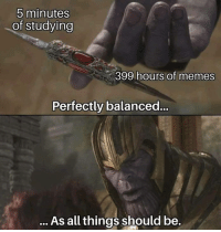 Memes, 🤖, and All: 5 minutes  of studying  399 hours of memes  Perfectly balanced.  As all things should be.