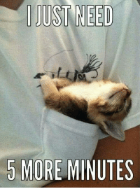I just need five more minutes   LOL   I do too: 5 MORE MINUTES I just need five more minutes   LOL   I do too