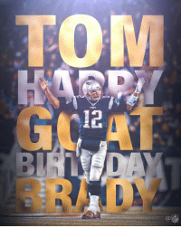 Birthday, Memes, and Tom Brady: 5 rings. 3 MVPs. 1 GOAT.  Happy 41st Birthday, Tom Brady! 🐐 https://t.co/D39HjI61Ny