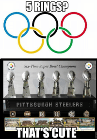 Cute, Memes, and Super Bowl: 5 RINGS  Sia-Time Super Bowl Champions  PITTS H  TEELERS  DO  THATS CUTE