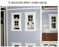 pizza: 5 seconds after l order pizza.