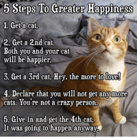 cat: 5 Steps To Greater Happiness  1. Geta cat,  2. Get a 2nd cat.  Both you and your cat  will be happier.  3. Get a 3rd cat, Hey. the more to love  4, Declare that vou will not get anw more  cats. You're not a crazy person  5. Give in and get the 4th cat,  It was going to happen anyway.