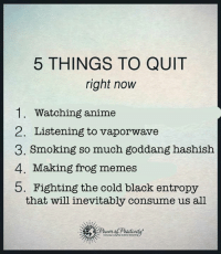 ·: 5 THINGS TO QUIT  right now  1. Watching anime  2. Listening to vaporwave  3. Smoking so much goddang hashish  4. Making frog memes  b. Fighting the cold black entropy  that will inevitably consume us all ·