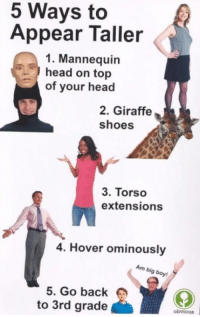 memehumor:  Some Tips For You: 5 Ways to  Appear Taller  1. Mannequin  head on top  of your head  2. Giraffe  shoes  3. Torso  extensions  4. Hover ominously  Am big boy  5. Go back  to 3rd grade  obviouS memehumor:  Some Tips For You