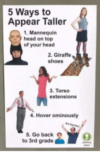 torso: 5 Ways to  Appear Taller  1. Mannequin  head on top  of your head  2. Giraffe  shoes  3. Torso  extensions  4. Hover ominously  Am big boy!  5. Go back  to 3rd grade  obviou  plant