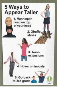 Head, Shoes, and Giraffe: 5 Ways to  Appear Taller  1. Mannequin  head on top  of your head  2. Giraffe  shoes  3. Torso  extensions  4. Hover ominously  Am big boy  5. Go back  to 3rd grade  obvious  plant meirl