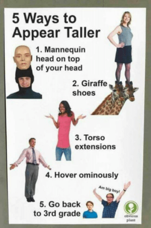 meirl: 5 Ways to  Appear Taller  1. Mannequin  head on top  of your head  2. Giraffe  shoes  3. Torso  extensions  4. Hover ominously  Am big boy  5. Go back  to 3rd grade  obvious  plant meirl