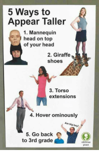 me irl: 5 Ways to  Appear Taller  1. Mannequin  head on top  of your head  2. Giraffe  shoes  3. Torso  extensions  4. Hover ominously  Am big boy!  5. Go back  to 3rd grade  obvious  plant me irl
