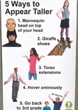 Head, Shoes, and Pinterest: 5 Ways to  Appear Taller  1. Mannequin  head on top  of your head  2. Giraffe  shoes  3. Torso  extensions  4. Hover ominously  Am big boy!  5. Go back  to 3rd grade  obvious 𝘧𝘰𝘭𝘭𝘰𝘸 𝘮𝘺 𝘱𝘪𝘯𝘵𝘦𝘳𝘦𝘴𝘵! → 𝘤𝘩𝘦𝘳𝘳𝘺𝘩𝘢𝘪𝘳𝘦𝘥