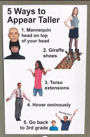 Some advice for all you short folks by chicken_mcjesus MORE MEMES: 5 Ways to  Appear Taller  1. Mannequin  head on top  of your head  2. Giraffe  shoes  3. Torso  extensions  4. Hover ominously  Am big boy!  5. Go back  to 3rd grade Some advice for all you short folks by chicken_mcjesus MORE MEMES