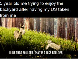 Fun yard time: 5 year old me trying to enjoy the  backyard after having my DS taken  from me  I LIKE THAT BOULDER. THAT IS A NICE BOULDER Fun yard time