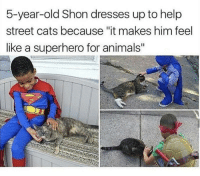 """<p>Here he comes to save the day!!</p>: 5-year-old Shon dresses up to help  street cats because """"it makes him feel  like a superhero for animals"""" <p>Here he comes to save the day!!</p>"""