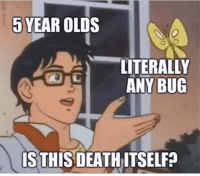 Memes, Help, and Can: 5 YEAR OLDS  -LITERALLY  ANY BUG  IS THIS DEATHITSELF? At least Im at the age where I can just tell them to bug off.You need your required daily intake of memes! Follow @nochillmemes​ for help now!
