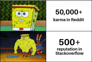 The struggle is real: 50,000+  karma in Reddit  500+  reputation in  Stackoverflow The struggle is real