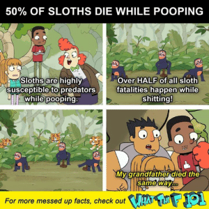 Crazy, Facts, and Memes: 50% OF SLOTHS DIE WHILE POOPING  Sloths are highly  susceptible to predators  while pooping:  Over HALF of all sloth  fatalities happen while  shitting!  My grandfather died the  same way  For more messed up facts, check out Stay safe out there, poopers.   Learn more crazy animal facts on What the F 101, streaming now on DROPOUT --> http://bit.ly/2unr3uB