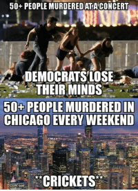 Chicago, Memes, and 🤖: 50+ PEOPLE MURDEREDATACONCERT  DEMOCRATSLOSE  THEIRMINDS  50+PEOPLE MURDERED IN  CHICAGO EVERY WEEKEND  *CRICKETS