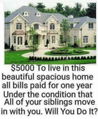 Beautiful, Dank, and Home: $5000 To live in this  beautiful spacious home  all bills paid for one year  Under the condition that  All of your siblings move  in with you. Will You Do It? #jussayin