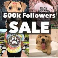 "Memes, Thank You, and Free: 500k Followers  SALE Thank you all for getting us to well OVER 500k followers! 40% off all orders over $99 today with code ""500k"" ALSO free silver Pawz necklace with any purchase today using code ""freenecklace"" ALSO FREE shipping as always🐶 ALSO we will be live streaming later and giving away free follows stay tuned 🐾🐶 pawzsavesthedogs"
