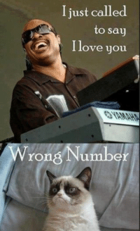 Cats, Love, and Grumpy Cat: I just called  to say  I love you  Wrong Number Join Grumpy Cat. for more smile emoticon