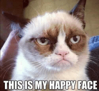 Join Grumpy Cat. for more grin emoticon: THIS ISMY HAPP FACE Join Grumpy Cat. for more grin emoticon