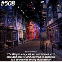 Memes, Would You Rather, and 🤖:  #508  MYPOTTE2FACTS  The Diagon Alley set was redressed with  moulded plastic and covered in dendritic  salt to become snowy Hogsmeade. QOTD: Would you rather visit Diagon Alley or Hogsmeade? 💓 . Please be sure to follow @iloveharrypotter9 because Val's account was hacked 😰 @iloveharrypotter9 💕 @iloveharrypotter9 💕 @iloveharrypotter9 💕