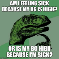 Diabetes, Type-1 Diabetes, and Sick: AMI FEELING SICK  BECAUSE MY BGIS HIGH?  OR IS MY BG HIGH  BECAUSE IM SICKa  mgflip.com A Type 1 Diabetes conundrum... Idea by Hiro Geeslin