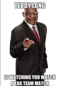 Wat, Wrestling, and World Wrestling Entertainment: TEDDY LONG  SWATCHING YOU WAT HH  ATAG TEAM MATCH