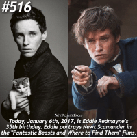 "Memes, Happy Birthday, and Beastly:  #516  MYP  TTAR  FACTS  Today, January 6th, 201, is Eddie Redmayne's  35th birthday. Eddie portrays Newt Scamander in  the ""Fantastic Beasts and Where to Find Them"" films. Happy Birthday Eddie! What is your favorite movie role you've seen him in? I love him in The Danish Girl, The Theory of Everything, Les Miserables, and of course Fantastic Beasts and Where To Find Them ❤🎥 . @hpfashion934 @forevermaddy_"