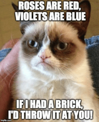 80s, Baby, It's Cold Outside, and Cats: ROSESARE RED,  VIOLETS ARE BLUE  IFIHADABRICK.  TDTHROWITAT YOU!  imgflip.com Join Grumpy Cat. for more smile emoticon 80s & 90s Babies Only