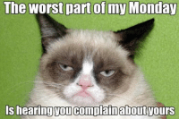 Cats, Meme, and Memes: The worst part of my Monday  Is hearing vou complain about ours Want to see our favorite Grumpy Cat Memes?  No. http://bit.ly/17UE2Uy
