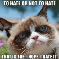 join Animal Memes. for more ( :: TO HATE OR NOT TO HATE  THAT IS THE.. NOPE, I HATE IT join Animal Memes. for more ( :