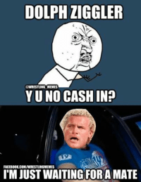 DOLPH ZIGGLER  @WRESTLING MEMES  YUNO CASHIN?  FACEBOOK COMVWRESTLINGMEMES  FORA  MATE  ITM JUST WAITING On a lighter note - the reason Dolph hasn't cashed in yet (if you don't get it click the YouTube link) https://www.youtube.com/watch?v=gJfll_INL9o