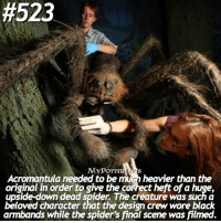Memes, Spider, and Spiders:  #523  MYP  Acromantula needed to be mihn heavier than the  original in order to give the correct heft ofa huge,  upside-down dead spider The creature was such a  beloved character that the design crew wore black  armbands while the spider's final scene was filmed. QOTD: Try commenting ARAGOG with your eyes closed! • Follow @iloveharrypotter9 ❤️
