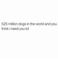 lol (@thebasicbitchlife): 525 million dogs in the world and you  think I need you lol lol (@thebasicbitchlife)
