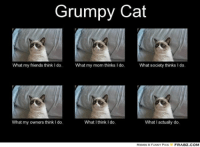 Cats, Friends, and Funny: Grumpy Cat  What my friends think l do.  What my mom thinks I do.  What society thinks I do.  What  my owners think do.  What I think I do.  What I actually do.  MEMES & FUNNY PICS  FRABZ COM Join Pusheen the Cat. ! grin emoticon